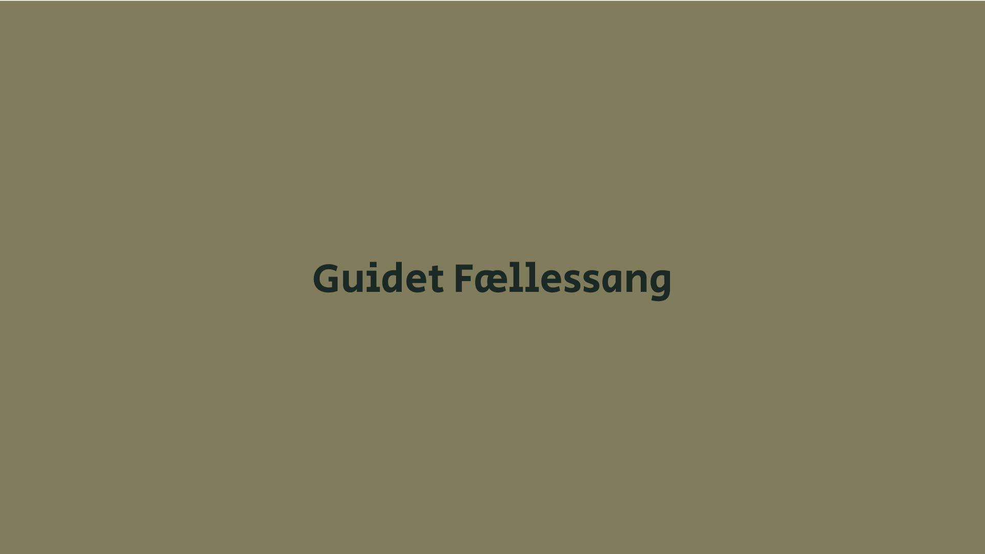 Guidet Fællessang